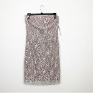 NEW Banana Republic Mauve Lace Strapless Dress 12